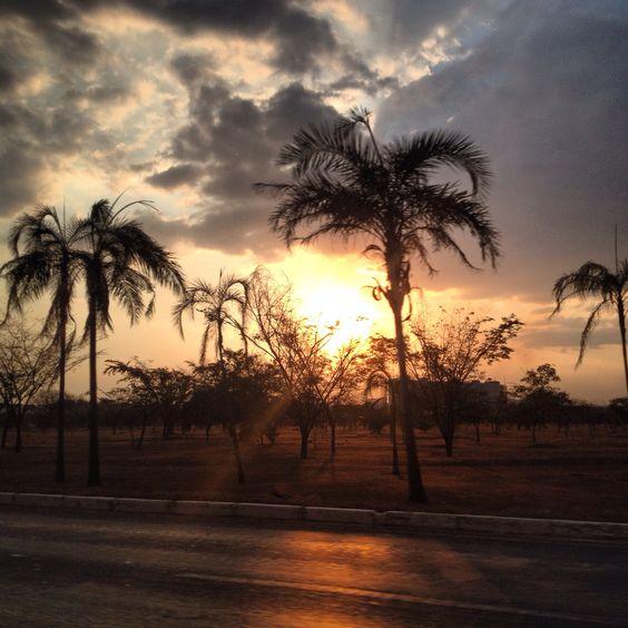 Sol de Brasília