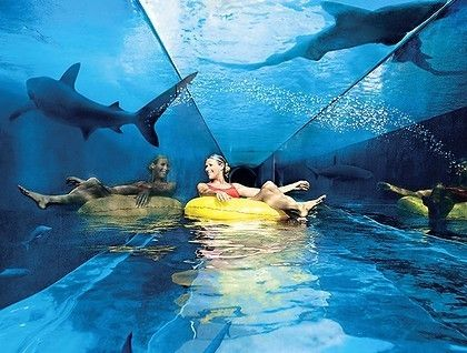 "Water-slide through a Shark Tank in Las Vegas.  Taking a slightly different approach to the ""scary water-slide"" concept."