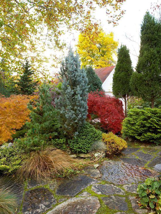 Fall Landscaping Ideas Fall Landscaping Evergreen Garden Evergreen Landscape