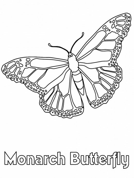 70 Unique Photos Of Monarch Butterfly Coloring Pages Butterfly