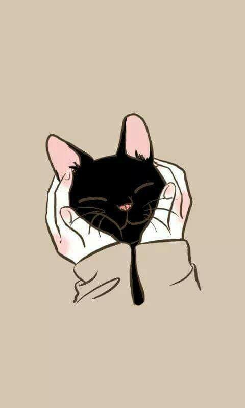 1920x1080 Cute Black Cat Wallpaper Hvgj Gatti Animali Sfondi