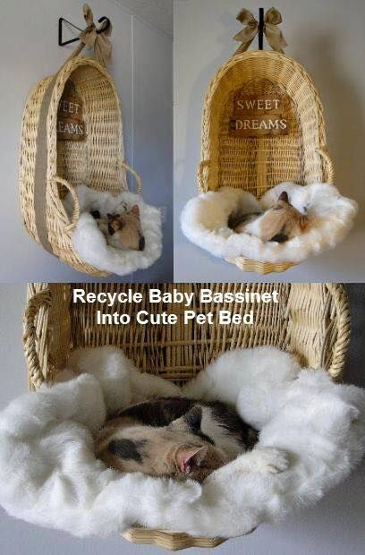 Meow love it! #diy #cat #bed: