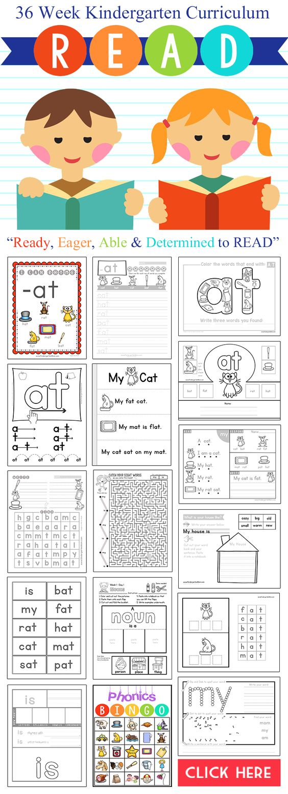 This new Kindergarten Reading Curriculum looks AMAZING!!  R.E.A.D. Curriculum…