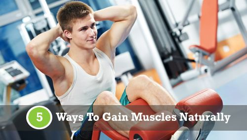 5 Ways to Gain Muscles Naturally | healthse.in