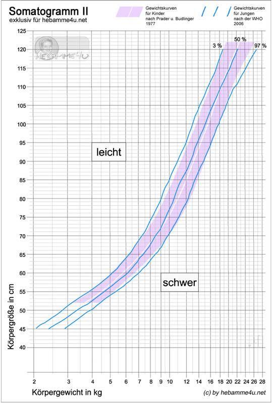 Diagramm zur Entwicklung des Gewichtsverlusts