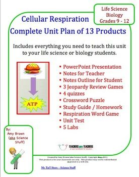 Your life review games and student on pinterest - Game design lesson plans for teachers ...