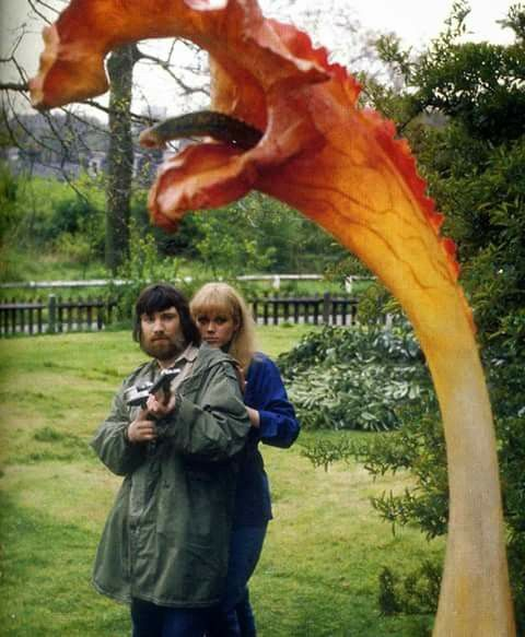 The Day Of The Triffids.