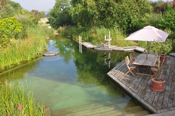 Natural Swimming Pool by Woodhouse Natural Pools