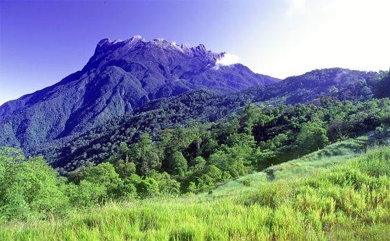 Kinabalu Park (Borneo - Malaysia)