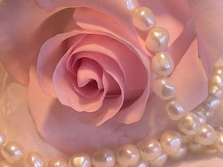 Pearls and pink - Photography Wallpaper ID 602707 ...
