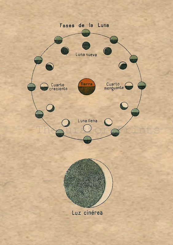 Old Moon In New Moons Arms >> The old, Google and Style on Pinterest