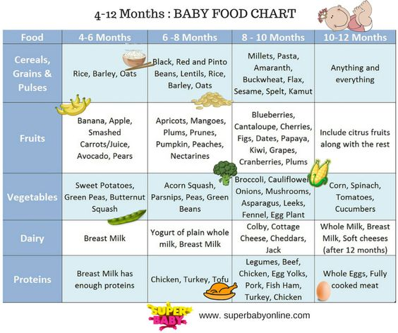 Baby Food Recipes  Months In Sri Lanka