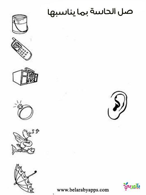 أوراق عمل عن الحواس الخمسة للأطفال جاهزة للطباعة تمارين عن الحواس الخمس بالعربي نتعلم Math Antiques Math Equations