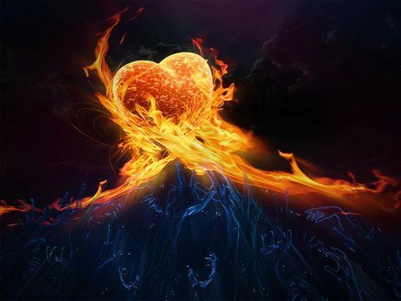 Wie ist Ihr Herz eingeteilt?