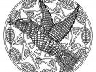 Display image coloring-free-mandala-difficult-for-adult-to-print-:-bird