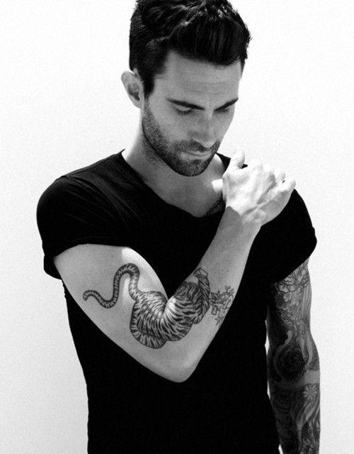 Adam levine love him and tattoos and body art on pinterest for Adam levine tiger tattoo