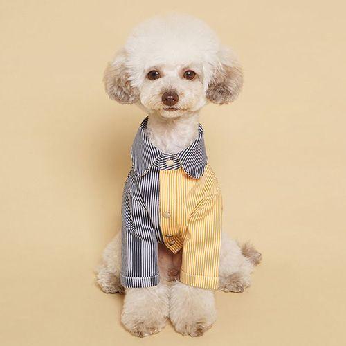 Peakrise Coloration Stripe Dog Shirts Mustard Navy Dog Shirts