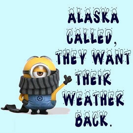 Buffalo By It Is Still Snowing On April 20 Funny Minion Quotes Funny Quotes Minions Funny