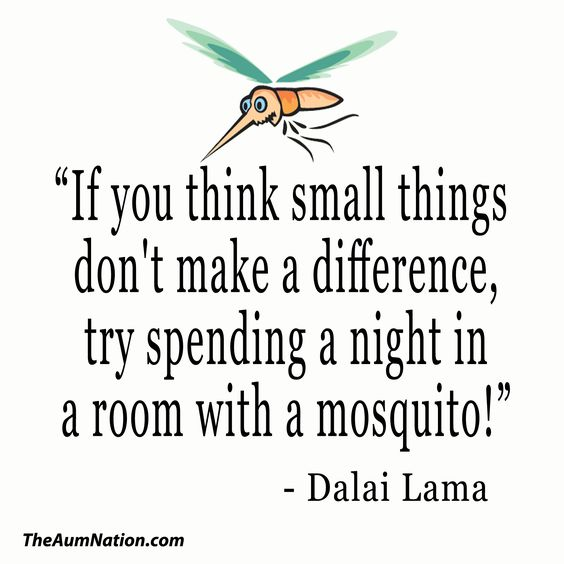"""If you think small things don't make a difference, try spending a night in a room with a mosquito!"" - Dalai Lama  ** We are all interconnected and we all make a difference.:"