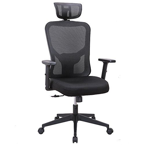 Cedric Ergonomic Mesh Office Chair High Back Desk Chair With Adjustable Lumbar Support Pu Armrests And Mes Mesh Office Chair Office Chair Mesh Computer Chair