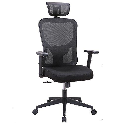 Cedric Ergonomic Mesh Office Chair High Back Desk Chair With