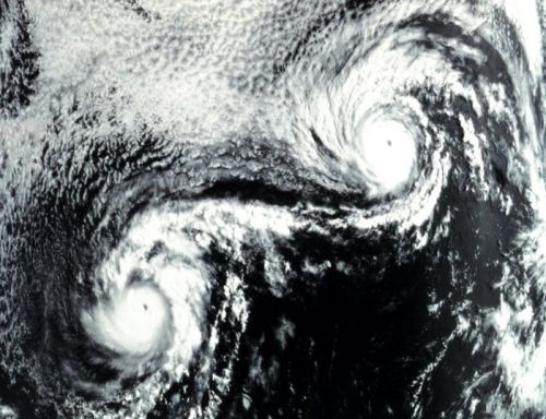 When hurricanes get close, they might begin to orbit each other - a rare event called the Fujiwhara  effect.