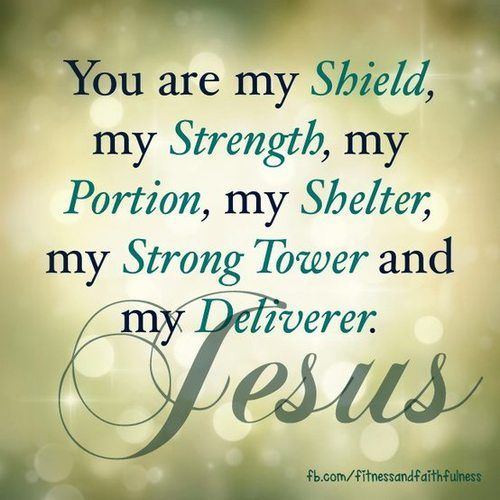 You are my shield, my strength, my portion, my shelter, my strong tower and my deliverer.: