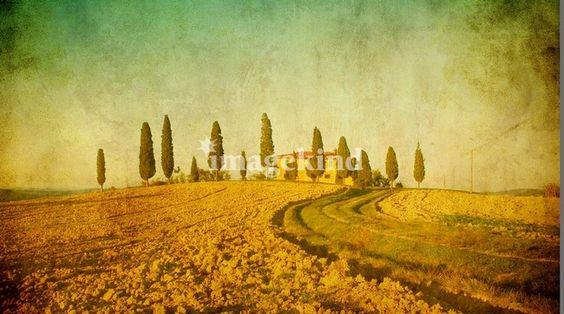 vintage tuscan landscape | Konstantin Kalishko