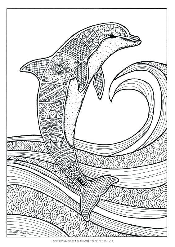 Baby Dolphin Coloring Pages Coloring Pages Dolphins Dolphin Tale Coloring Pages Dolp In 2020 Dolphin Coloring Pages Coloring Pages For Grown Ups Mandala Coloring Pages