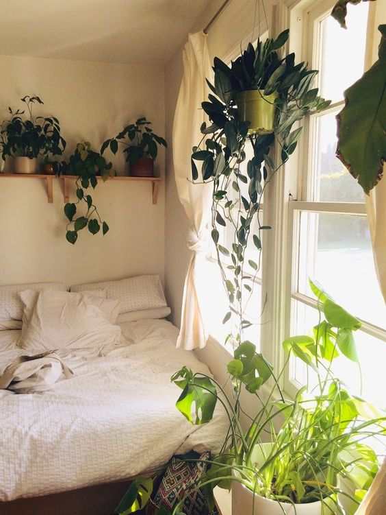 plants earthy and bohemian bedroom decor on pinterest