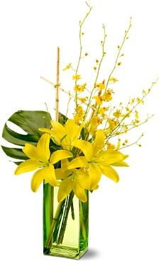 flowers: Tropical Flower Arrangements: