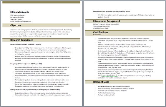 National Account Coordinator Resume Accounting Resume Samples - hr generalist resumes
