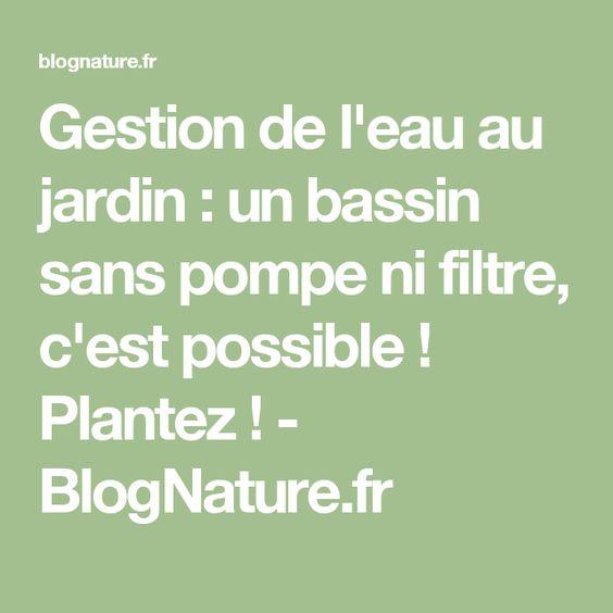 Gestion de l'eau au jardin : un bassin sans pompe ni filtre, c'est possible ! Plantez ! - BlogNature.fr
