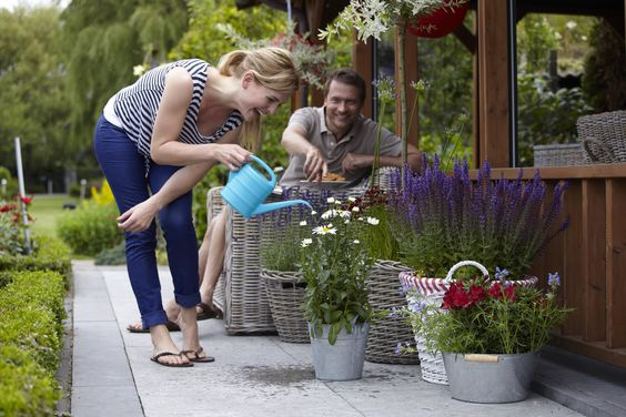 Watering wisely will keep plants in pots at their best without wastage