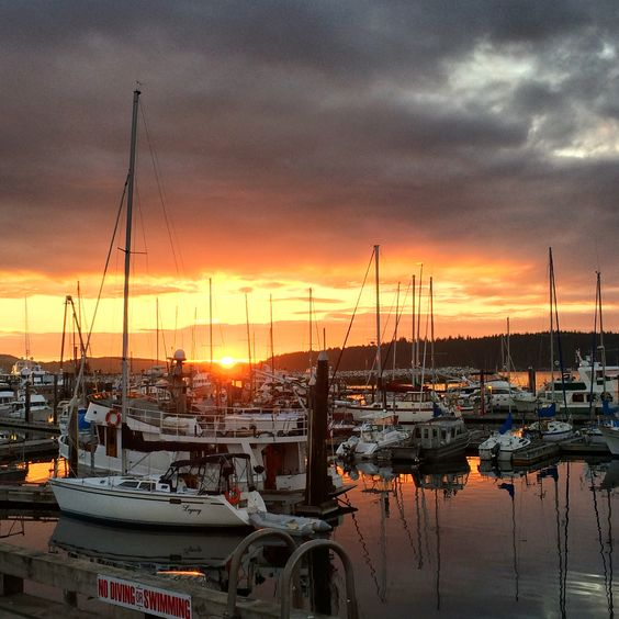 #PortMcNeill #Dock #Boats #BritishColumbia #Sunset #Beauty