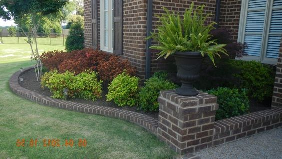 Pinterest the world s catalog of ideas for Low maintenance front garden ideas