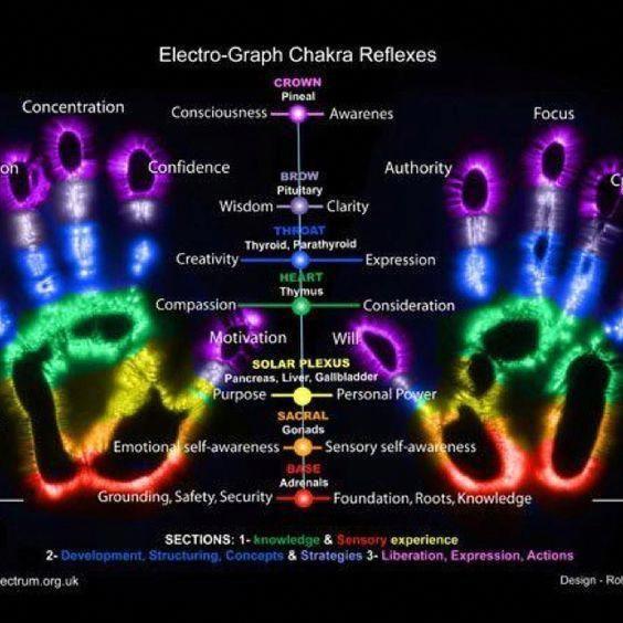 Chakras Reflexes - Electro Graph #rikitips