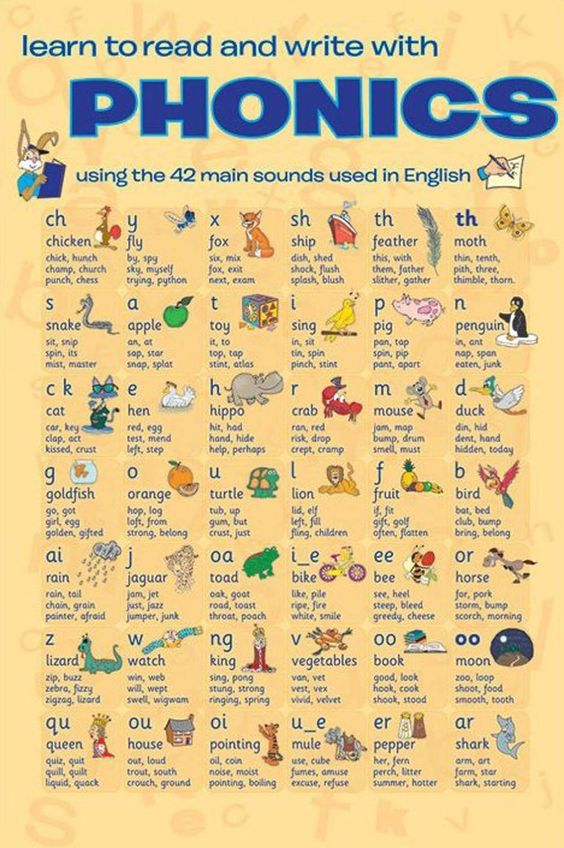 Elementary A    English Lesson Plan with videos for ESL EFL teachers