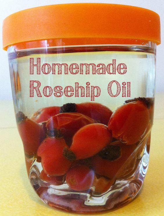 Easy Homemade Rosehip Oil How To