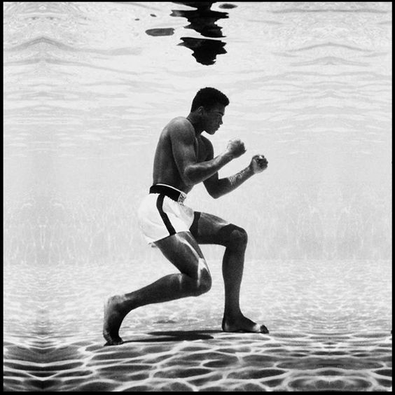 #PicOfTheDay | FRENCH DEAL UNIVERSE !!!  #Legend #MohamedAli #Winner #Boxe #Sport #Champion #Training #Spirit #Concentration #Preparation #NothingIsImpossible #Elegance #Inspiration #Vision #Ambition #NewCityLifeStyle #FrenchDeal  cc Mohamed Ali