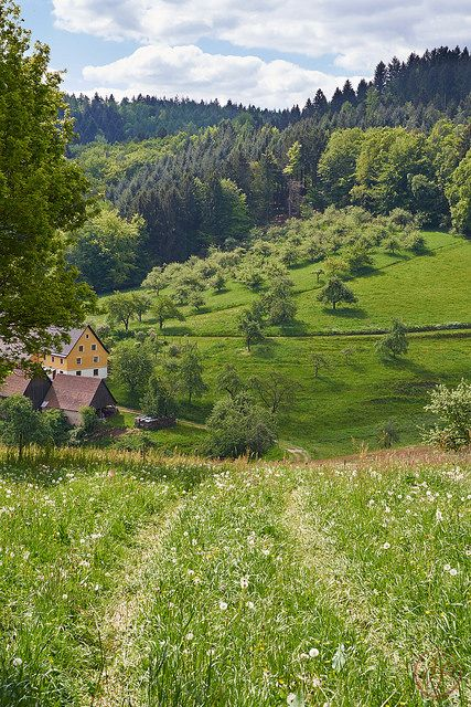 Odenwald Germany.