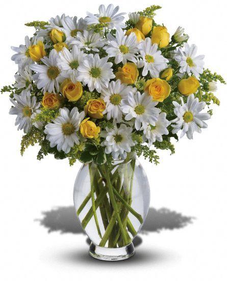 Teleflora's Amazing Daisy Flowers, Teleflora's Amazing Daisy Flower Bouquet - Teleflora.com