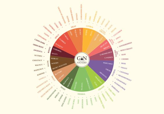 Gin Foundry's Tasting Wheel