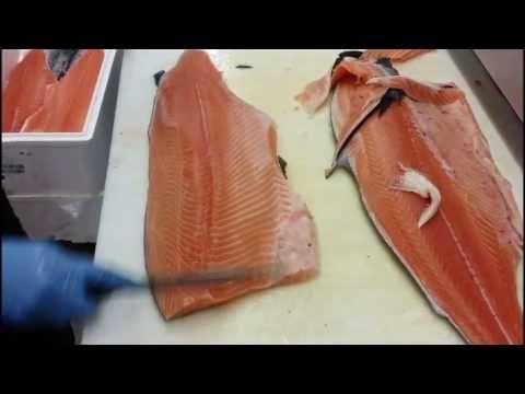 Lohen Fileoitni Video 2 Salmon Fillet Food