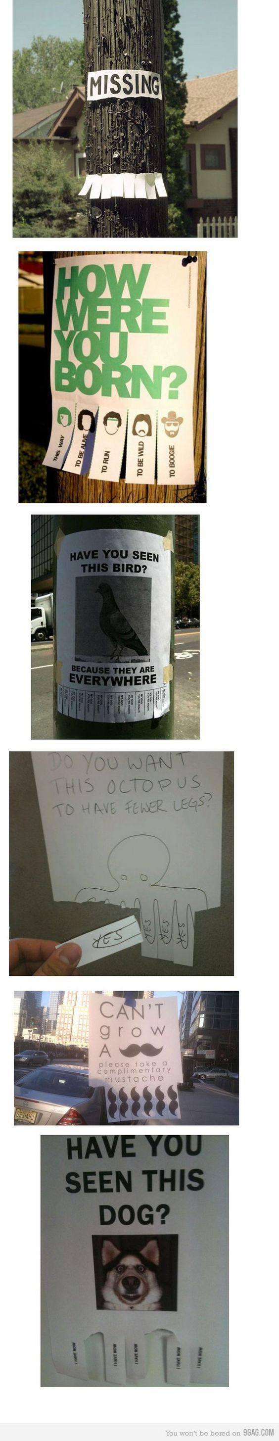 Funny Signs (16 Pics)