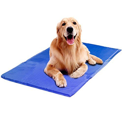 Pet Cooling Mat Legendog Cat Dog Self Cooling Mat Gel Click On The Image For Additional Details It Is Amazon Affi Indestructable Dog Bed Dogs Cool Pets