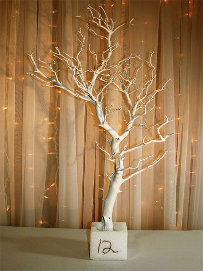 Decorate my wedding wedding decorations for rent crystal decorate my wedding wedding decorations for rent crystal wedding trees things i love pinterest tree decorations wedding trees and crystal wedding junglespirit Image collections