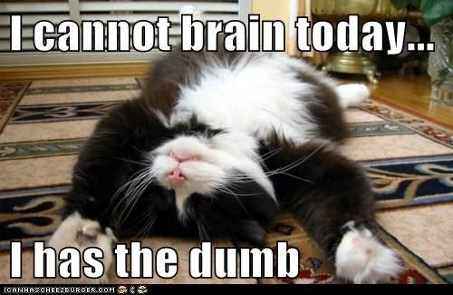 I cannot brain today... I has the dumb: