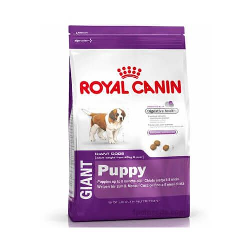 Royal Canin Giant Starter 4kg Is Best Food For Giant Dog This Is