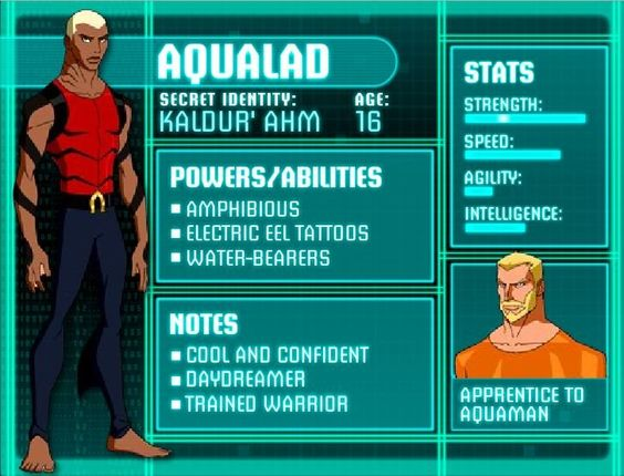 Quiz Result: Which Young Justice member are you?